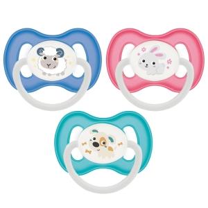 Пустышка симметричная Canpol Babies Bunny and Company силиконовая, 0-6 месяцев